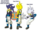 Sonic and Shadow Metamoran Fusion: Shadic