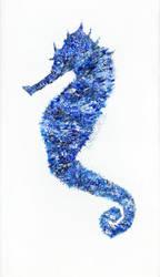 Seahorse Pnt
