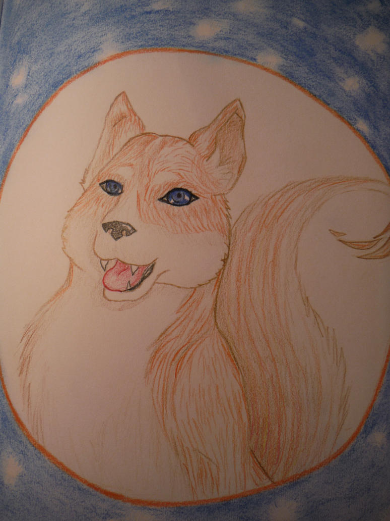 C. Husky by wolfsmoon22