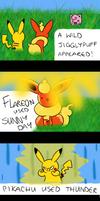 Flareon used Sunny Day