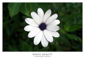 WHITE BEAUTY by OtlAicher