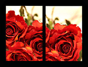 Red Red Rose by Dellessanna