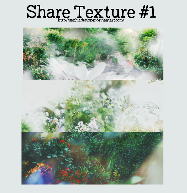 SHARE TEXTURE #1 by SaphiaDesigner
