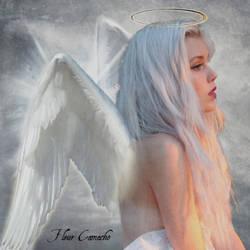 Angel by FleurCamacho