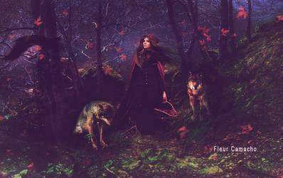 Robin Red by FleurCamacho