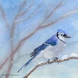 Blue Bird by Sarah-Diane