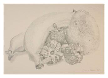 Fruit by Sarah-Diane