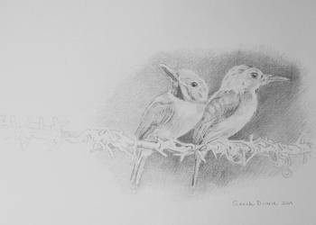 Birds on a Wire by Sarah-Diane