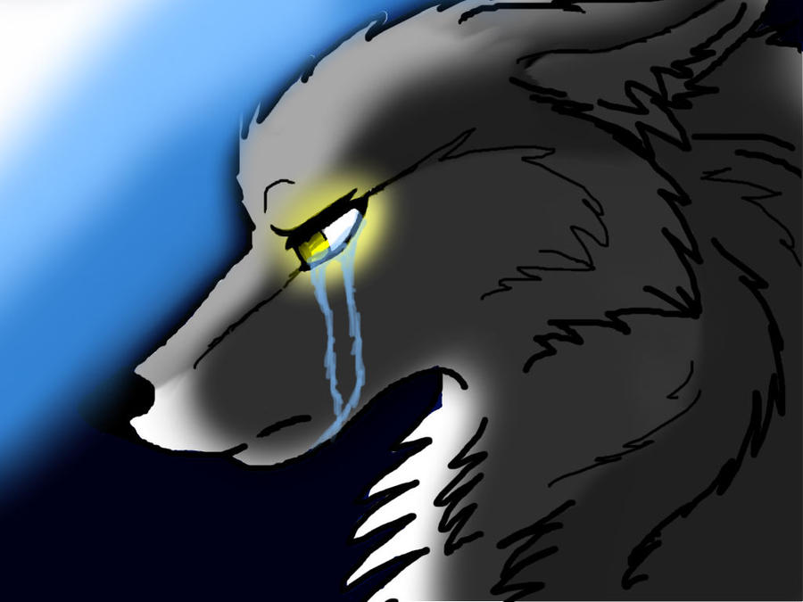 sad wolf crying drawing
