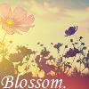 Blossom2 by samentha17
