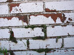 brick texture 2 by fotophi