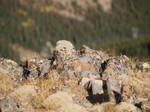 mountain hilltop rocks 7