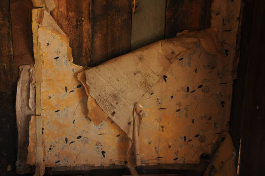 peeling wallpaper texture