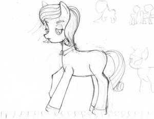 pony chafa