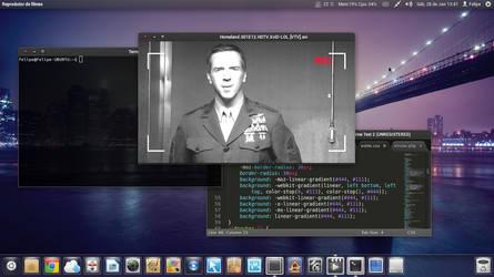 Desktop 01.28 by Felipi
