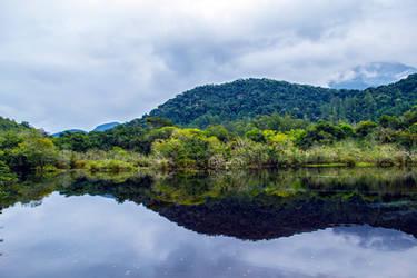 Tropical Mirror 1 by Felipi