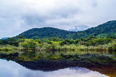 Tropical Mirror 2 by Felipi