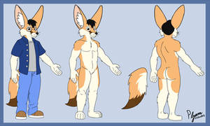 Updated Rufus Reference Sheet 2020