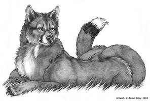 Wougar in Repose by Emryswolf