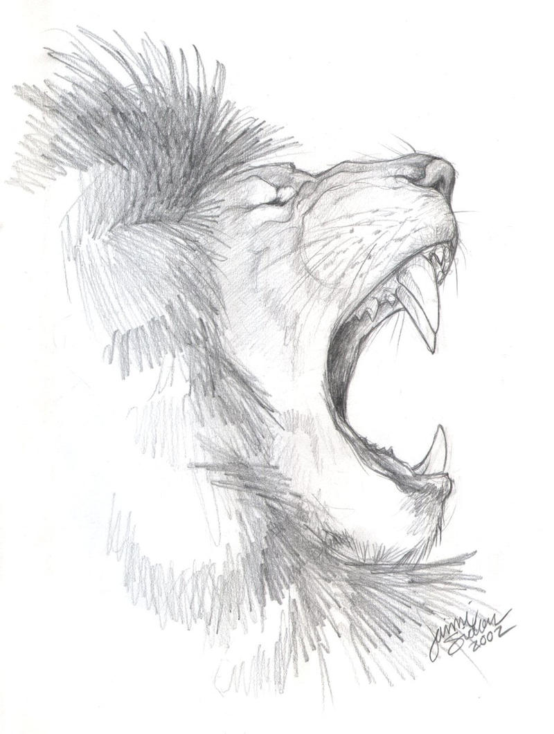 african lion sketch by emryswolf traditional art drawings animals 2009 ...