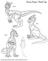Domestic Dragon Type