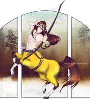 Lowen, the Archer by Chyana