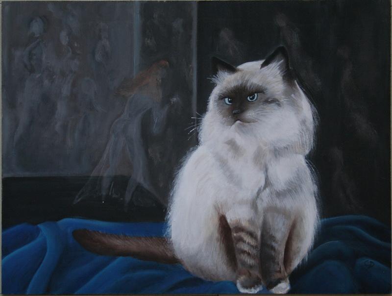 Dream cat by shizuka10
