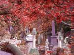 Highgate Cemetery of London 01