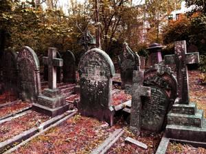 Highgate Cemetery of London 02