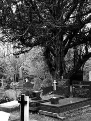 Highgate Cemetery of London 03