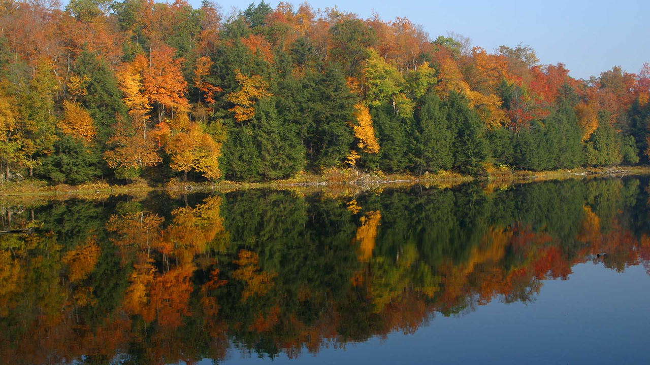 Gatineau Park 1 HD by MichelLalonde