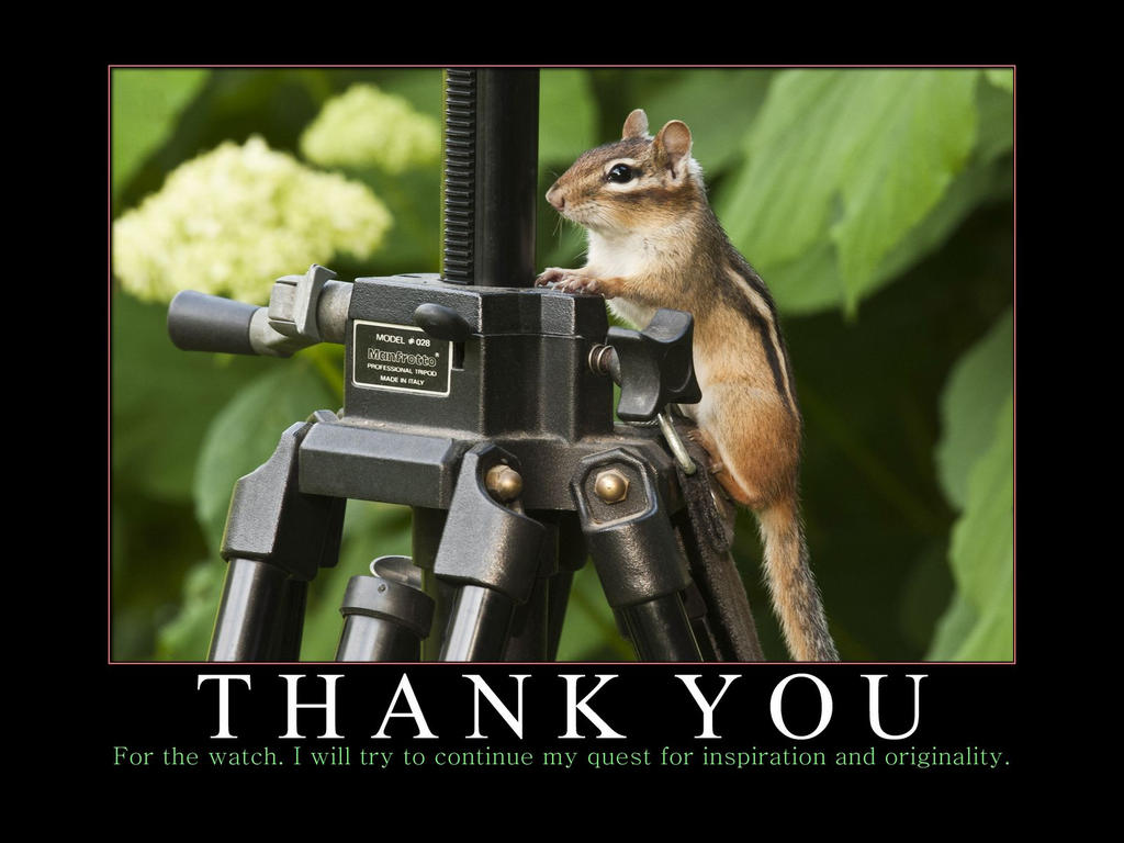 Funny Animal Thank You Meme : Thank you watch by michellalonde on deviantart