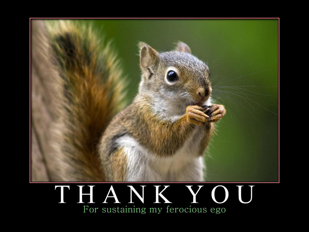 Funny Animal Thank You Meme : Thank you favourite by michellalonde on deviantart