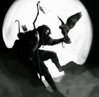Falconer by TimKings-Lynne