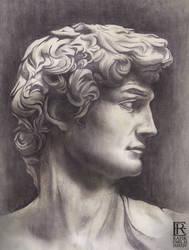 Face Of David by Rafik Emil H