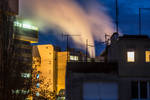 Morning pollution by Liliaceae7