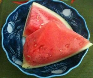 shinjitsuSekai's Profile Picture