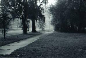 Lost in the Fog -3 by Robb-Wayward