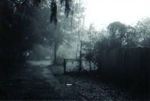 Lost in the Fog -5 by Robb-Wayward