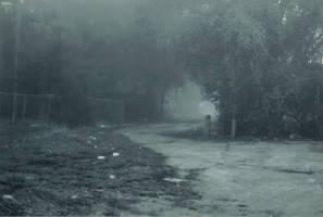 Lost in the Fog -6 by Robb-Wayward