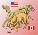 APH Wolfinized: USA and Canada