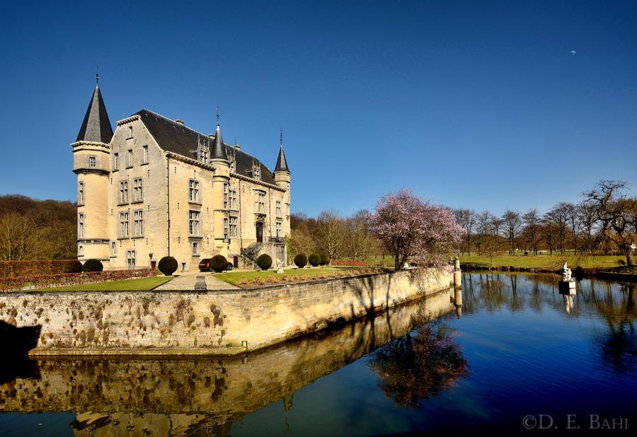 Schaloen Castle by debahi
