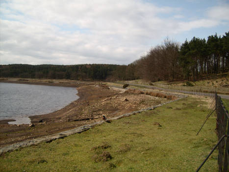 The Lodgemoor Reservoir Bank