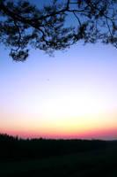 sunset by Laplum