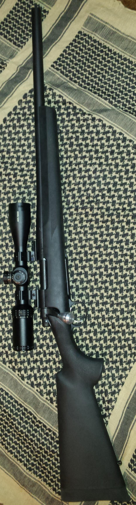 Remington 700 SPS Tactical .308 by kiabe1
