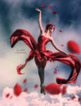 Dance of the rose