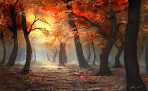Autumn leaves in the light by umbatman
