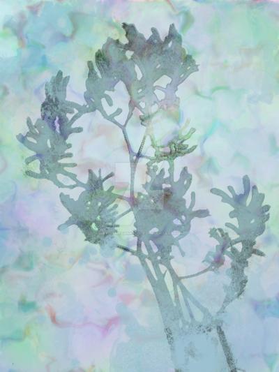 Artist Megan Nicole ~ Springs Delight by ArtistMeganNicole
