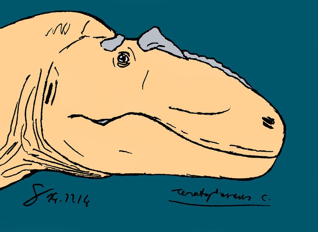 tyrannosauridae portraits : Teratophoneus redo by ShinRedDear