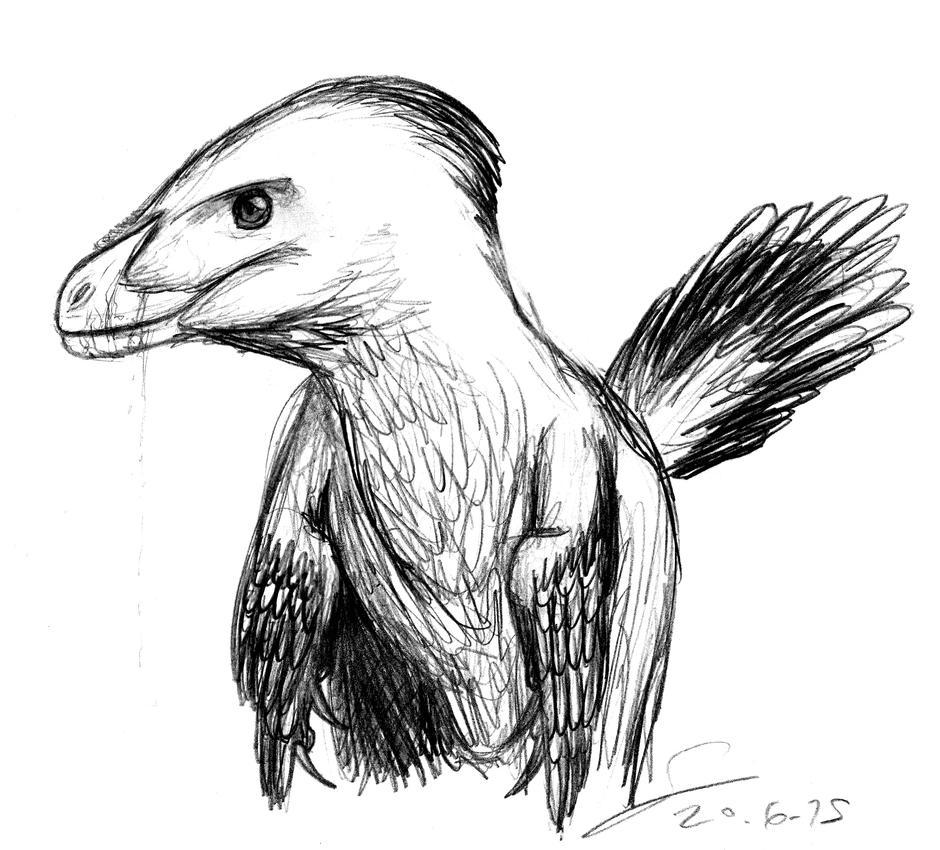JP raptor with feathers by ShinRedDear